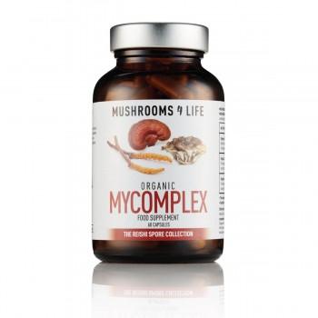 MyComplex mushroom...