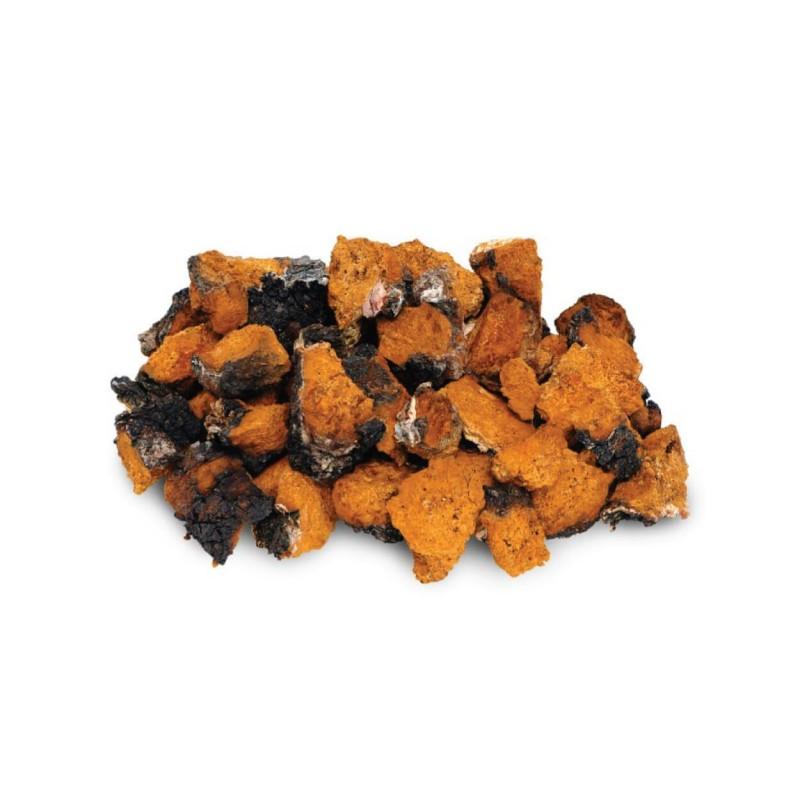 """Maisto papildas """"Organic Chaga"""", mushrooms4life, 60 kapsulių"""